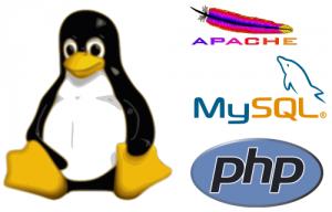 PHP - MySQL
